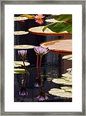 Tropical Waters Floral Charm Framed Print by Byron Varvarigos