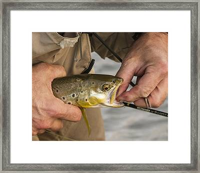 Trout Dentistry Framed Print by Jean Noren