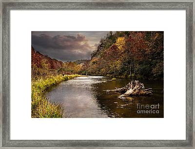 Trout Fishing Framed Print by Tamyra Ayles