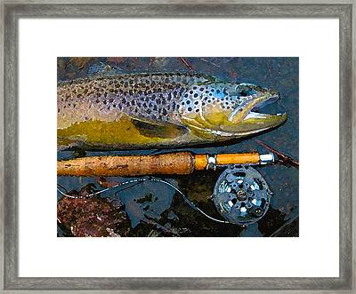 Trout On Fly Framed Print by Lina Tricocci
