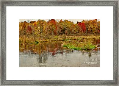Trout Stream II- Textured Framed Print by Gary Richards