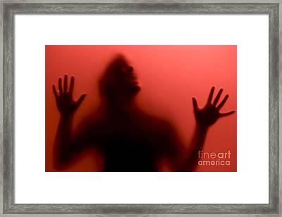 True Blood Framed Print by Diane Diederich