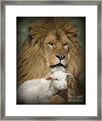 True Companions Framed Print by Wildlife Fine Art