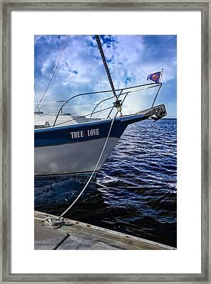 True Love Framed Print by Debra and Dave Vanderlaan