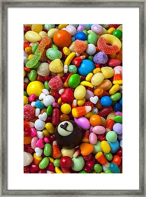 Truffle And Candy Framed Print by Garry Gay