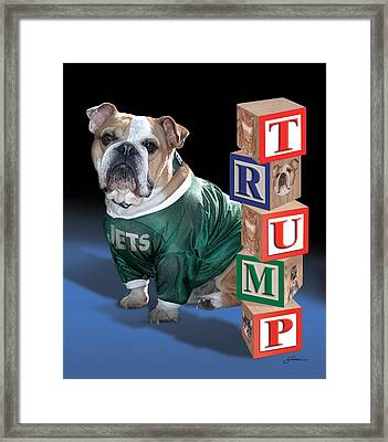 Trump Framed Print by Harold Shull