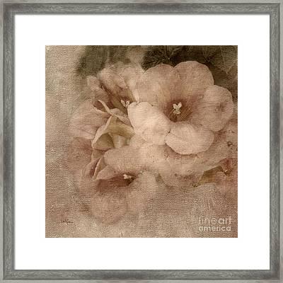 Trumpet Flowers #2 Framed Print by Betty LaRue
