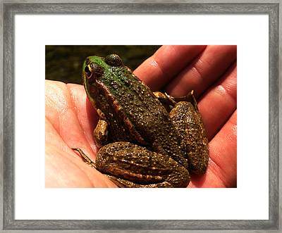 Trust Me Framed Print by Lucy D