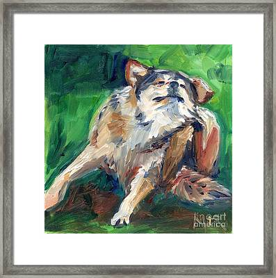Truth Wolf In Oil Paint Framed Print by Maria's Watercolor