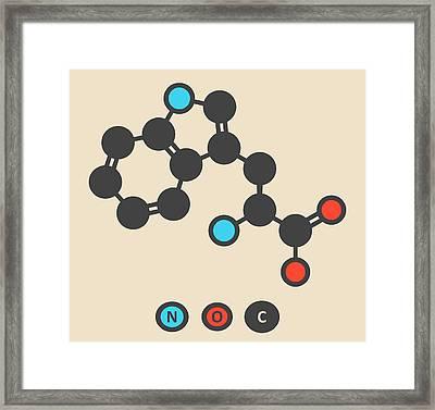 Tryptophan Amino Acid Molecule Framed Print by Molekuul
