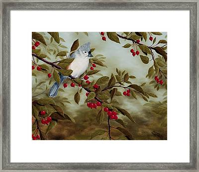 Tufted Titmouse Framed Print by Rick Bainbridge