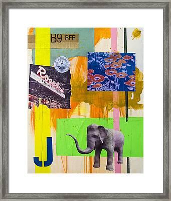 Tufts Framed Print by Damian Barneschi