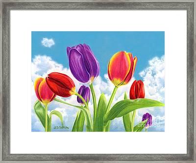Tulip Garden Framed Print by Sarah Batalka