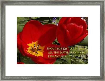 Tulip Shout Framed Print by Dave Walton