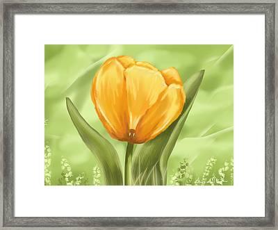 Tulip Framed Print by Veronica Minozzi