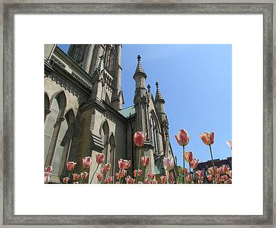 Tulip With The Church Framed Print by Alfred Ng