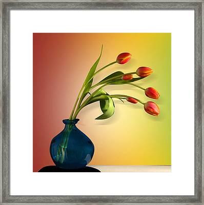 Tulips 5 Framed Print by Mark Ashkenazi