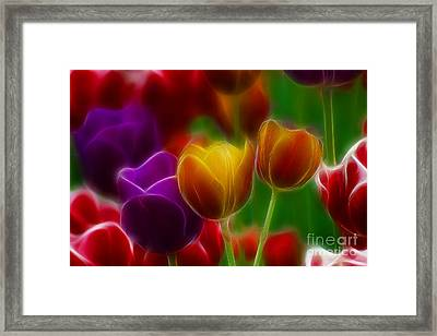 Tulips-7060-fractal Framed Print by Gary Gingrich Galleries