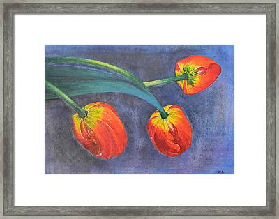 Tulips Framed Print by Adel Nemeth