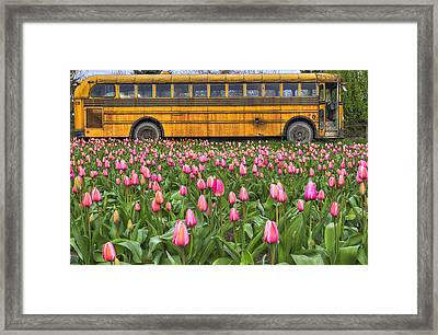 Tulips And Old Bus Framed Print by Mark Kiver