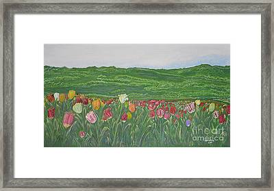 Tulips Dream Framed Print by Felicia Tica