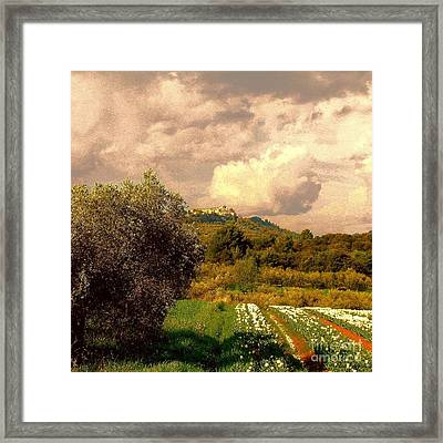 Tulips Field And Lurs Village In Provence France Framed Print by Flow Fitzgerald