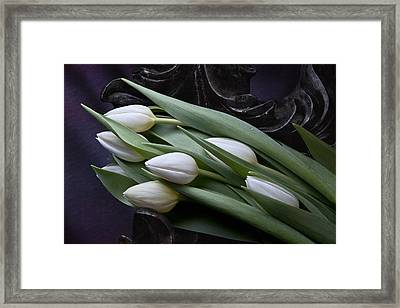 Tulips Laying In Wait Framed Print by Tom Mc Nemar