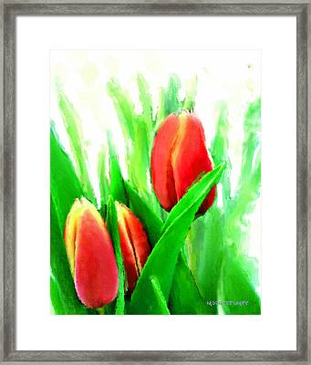 Tulips Framed Print by Moon Stumpp