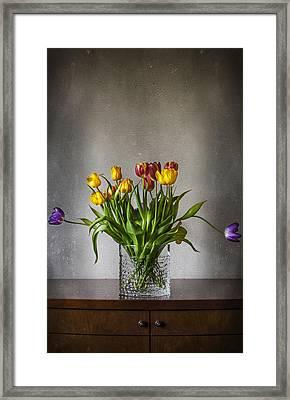 Tulips Framed Print by Svetlana Sewell
