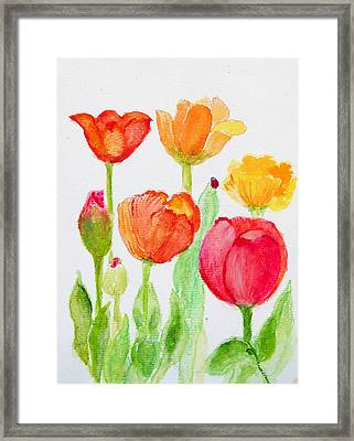 Tulips With Lady Bug Framed Print by Ashleigh Dyan Bayer
