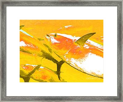 Tuna Fish M54 Framed Print by Wingsdomain Art and Photography