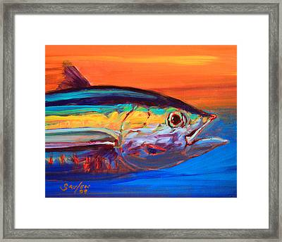Tuna Portrait Framed Print by Savlen Art