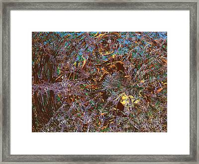 Tunnel Vision Framed Print by Ed Churchill