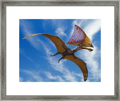 Tupandactylus Imperator, A Pterosaur Framed Print by Sergey Krasovskiy