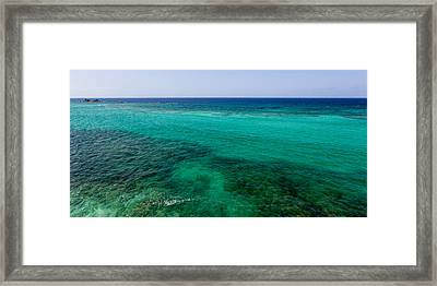 Turks Turquoise Framed Print by Chad Dutson