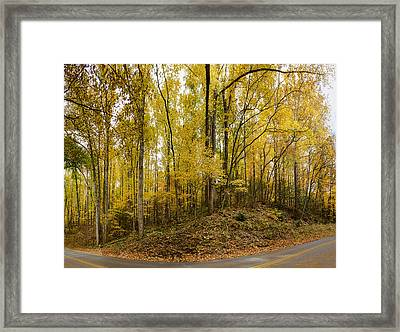 Turned The Brights On Framed Print by Heather Applegate