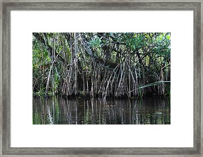 Turner River 05 Framed Print by Carol Kay