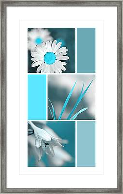 Turquoise Flowers Collage Framed Print by Christina Rollo
