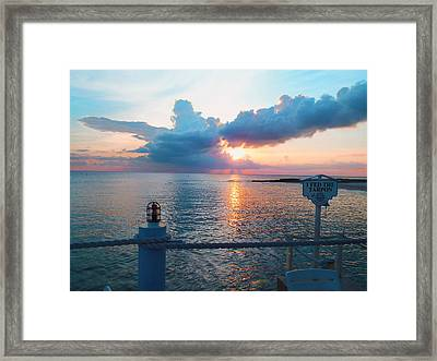 Turtle Cloud Framed Print by Carey Chen