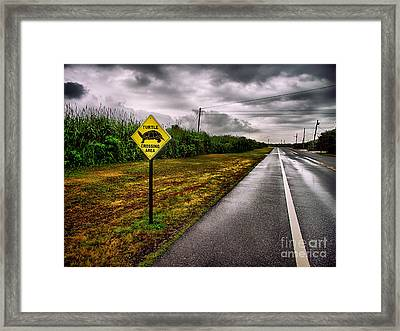 Turtle Crossing Area Framed Print by Mark Miller