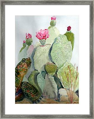 Turtle Gazing Upon Dessert Framed Print by Joann Perry