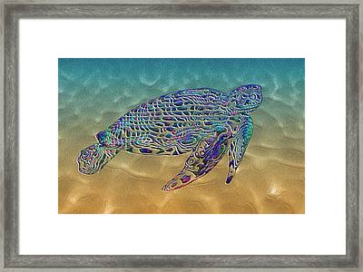 Turtle Framed Print by Jack Zulli