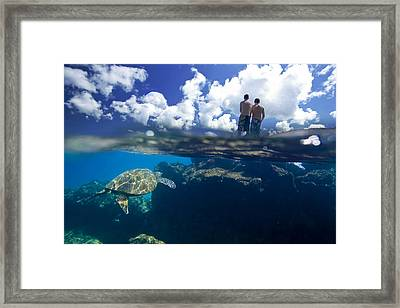 Turtles View Framed Print by Sean Davey