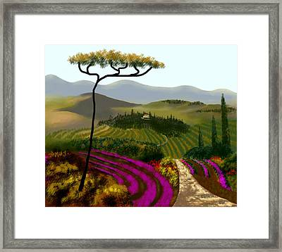 Tuscan Countryside Framed Print by Larry Cirigliano