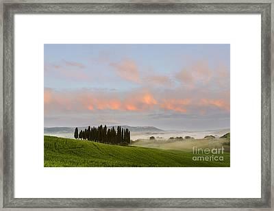Tuscan Cypresses Framed Print by Yuri Santin