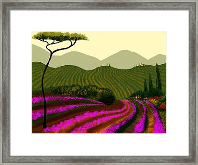Tuscan Fields Of Color Framed Print by Larry Cirigliano