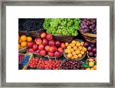Tuscan Fruit Framed Print by Inge Johnsson