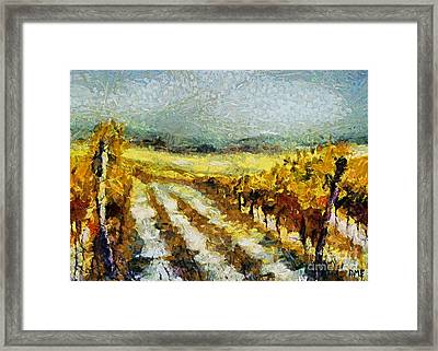 Tuscan Vineyard Framed Print by Dragica  Micki Fortuna