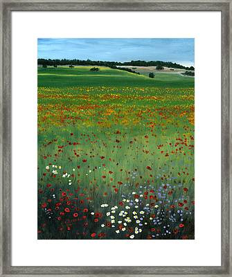 Tuscany Flower Field Framed Print by Cecilia Brendel
