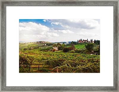 Tuscany Italy Vineyard And Countryside Framed Print by Susan Schmitz